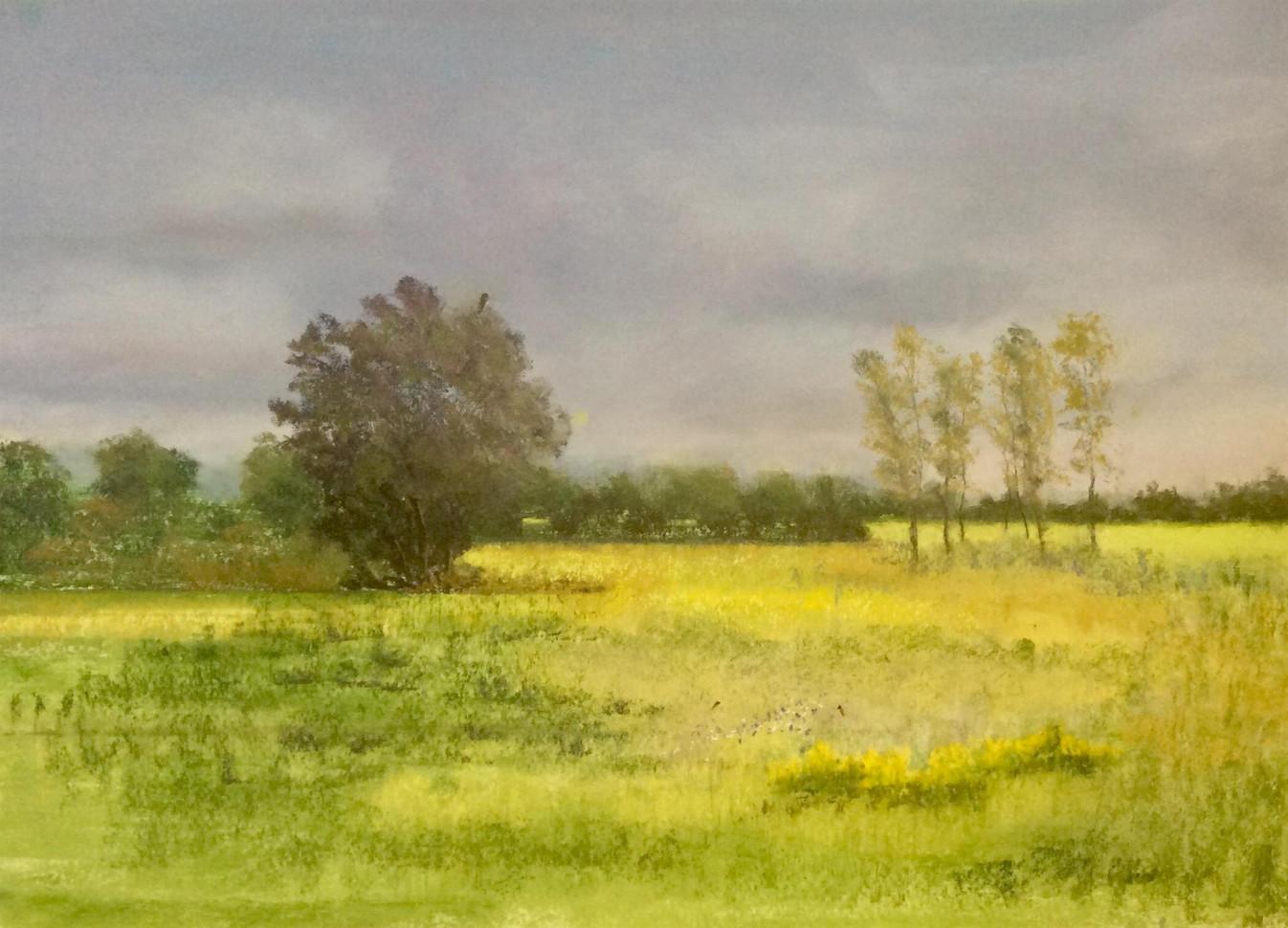 "Nina Thomson (Sacramento), Hawk Hunting Grounds, 2020 Pastel, 18"" x 24"" $225"