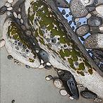 Jamey Brzezinski, Rocks,Sand,Water,Liche