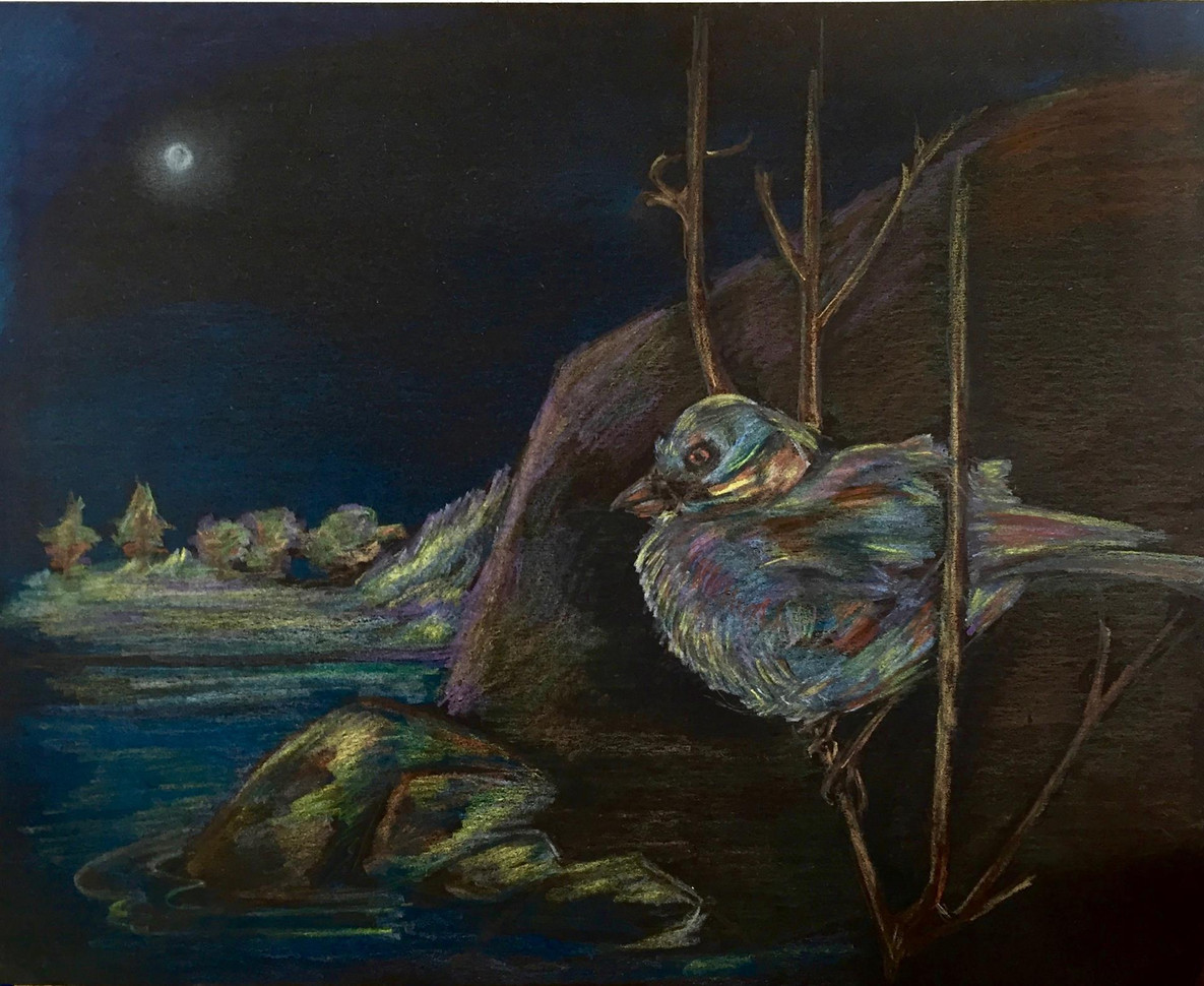 "Anne Bailey (Turlock) Night Bird: In the Time of Covid prismacolor on paper, 14"" x 11"" $200"