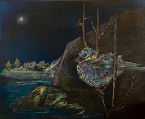 """Anne Bailey (Turlock) Night Bird: In the Time of Covid prismacolor on paper, 14"""" x 11"""" $200"""