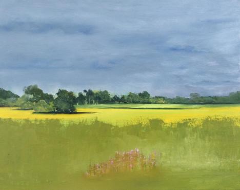 """Nina Thomson (Sacramento), Light on the Mustard, 2020 Oil on canvas, 11"""" x 14"""" $150"""
