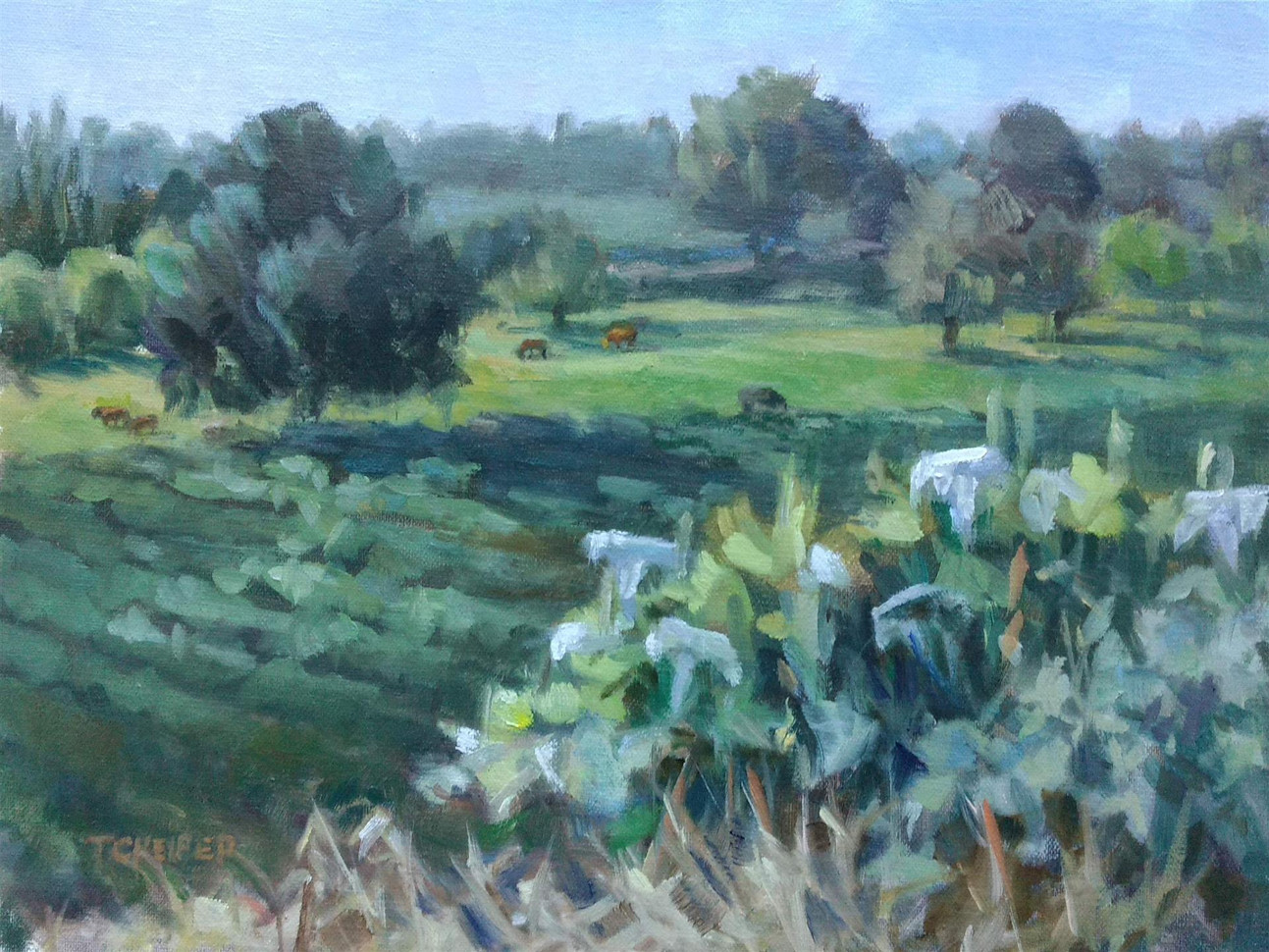 "Tamara Keiper (Waterford), Vineyard Vista with Cattle, 2020 Oil painting, 9"" x 12"" $1,200"