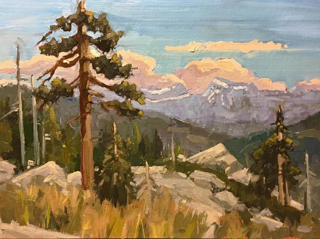 "Linda Abbott (Merced) Liberty Viewpoint, 2019 Oil on panel 12"" x 16"" $500"