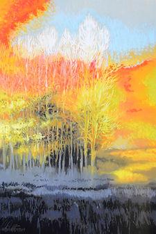 Vivian Varni Patton, Forest Gone I.jpg