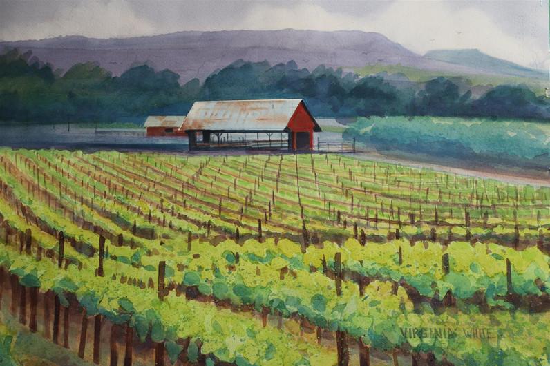 "Virginia White (Modesto), California Vineyard, 2020 Watercolor, 22"" x 28"" $375"