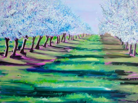 "Sally Ruddy (Waterford), Almond Splendor, 2018 Oil on canvas, 35.5"" x 45.5"" $2,000"