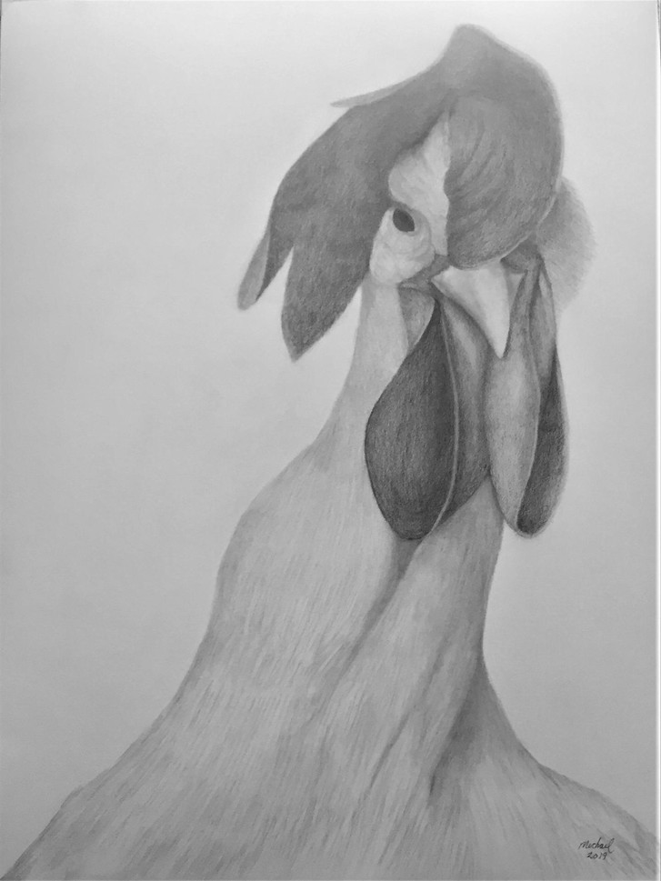 "Michael Souza (Turlock), Rooster Booster, 2019 Graphite on paper, 18"" x 24"" $450"