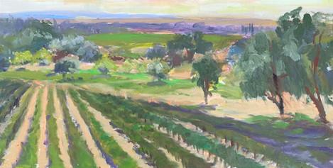 """Chella Gonsalves (Modesto), On Turlock Road, 2020 Oil on canvas, 12"""" x 24"""" $650"""