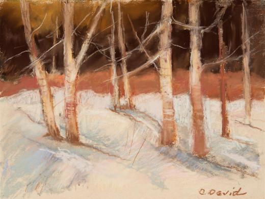 """Carol David (Modesto) Cold Morning, 2019 Pastel 19"""" x 16"""" $325"""