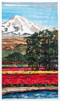 Skagit Valley textiles $1,440