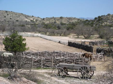 "Leslie Thompson (Oakdale), The Bellota Ranch, 2018 Photograph, 8"" x 10"" $55"