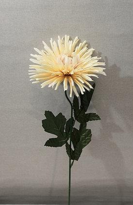 Krysanteemi 58cm