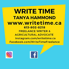 Write Time new logo.png