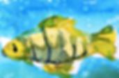 holyillu.fishwaterunder.png