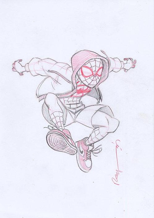 Spiderman/Sketch