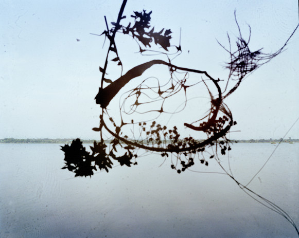 Disintegrate Landscape 3 .jpg