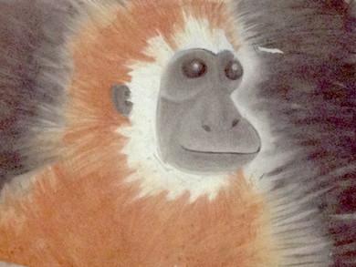 Chimp (2009)