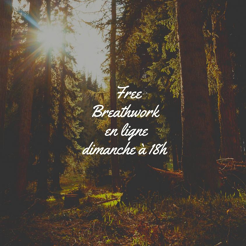 Session de breathwork gratuite dimanche
