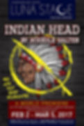 Indian Head Poster