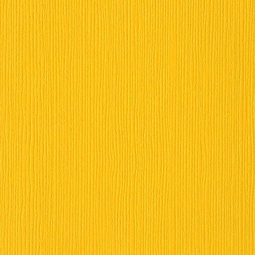 Desert Marigold, Fourz Texture