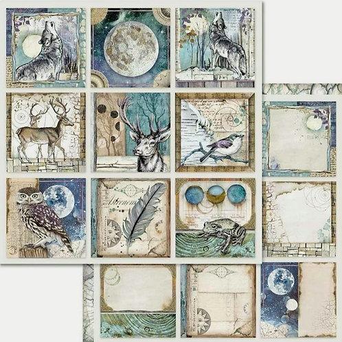 Cosmos Card Cardstock