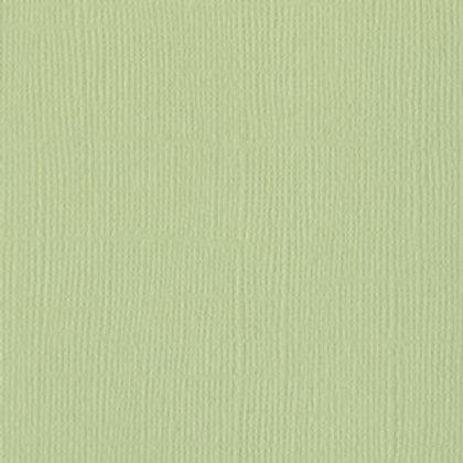 Aloe Vera Monochromatic Texture