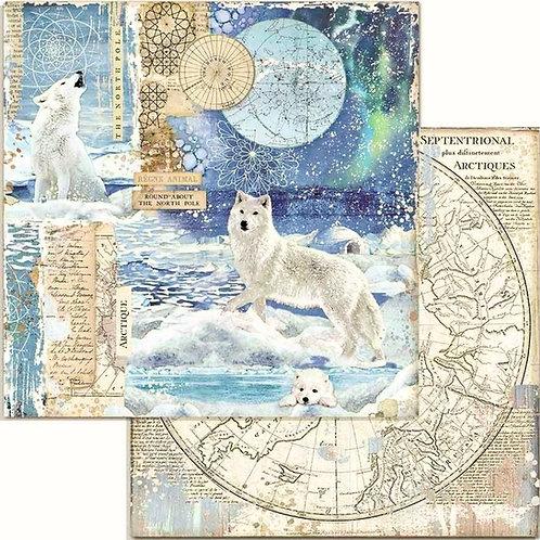 Arctic Antarctic Wolf Cardstock