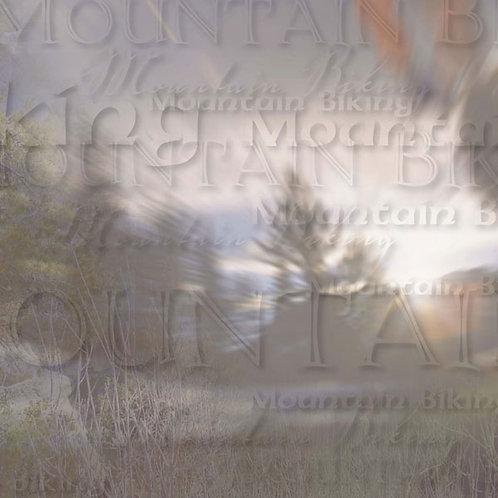 Mountain Biking Paper