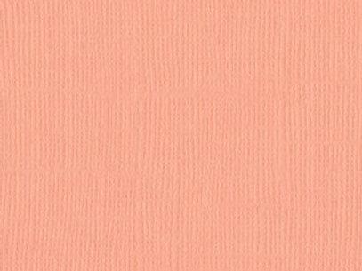 Coral Cream MonochromaticTexture