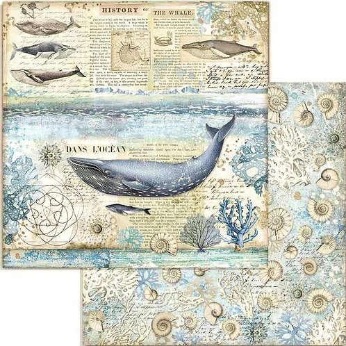 Arctic Antarctic Whale Cardstock