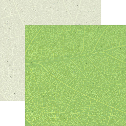 Earth Day 1 Cardstock