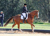 Rich River Equestrian Club