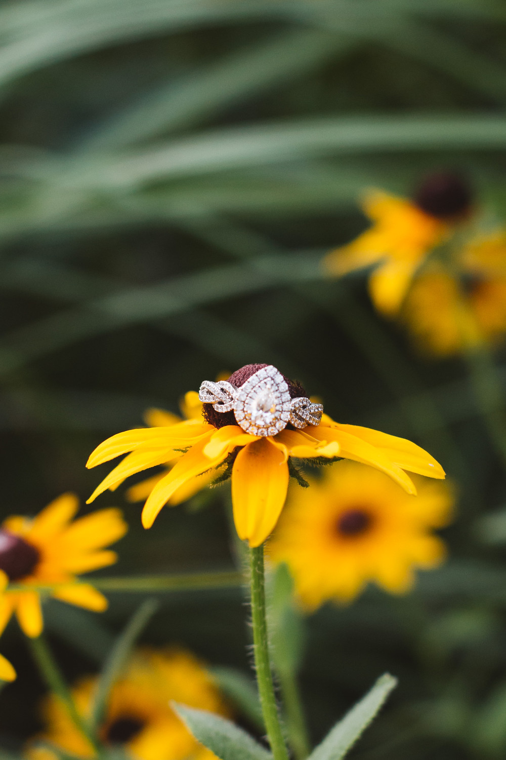 Engagement Ring on Yellow Flower