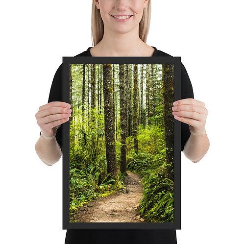 """Forest Trail"" by Melissa Toledo - framed giclée poster"