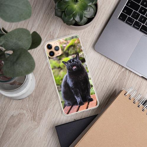 """Black Cat Talking"" by Melissa Toledo - iPhone Case"