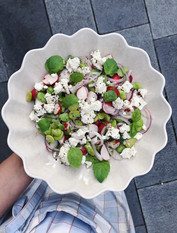 broad bean salad, radishes, mint, summer salad