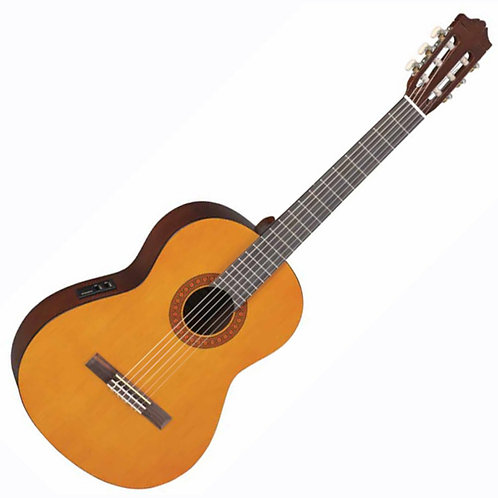 Classical Guitar. Full size.