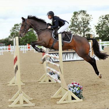 Horse jumping copy.jpg