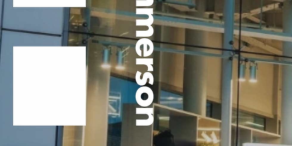 Hammerson Company Meeting - 31st March - postponed