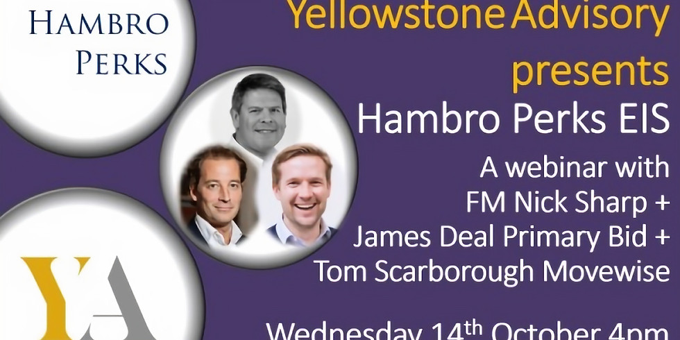 Yellowstone Advisory webinar with Hambro Perks Co-Investment EIS fund: How to invest in unlisted growth companies