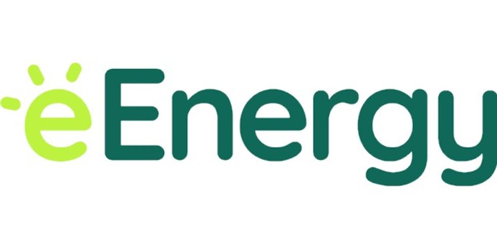 eEnergy Group Webinar