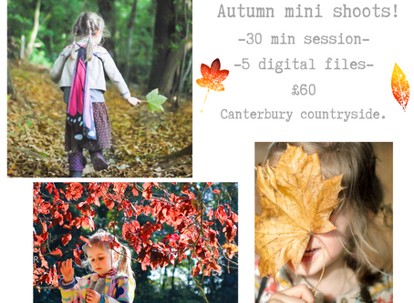 Autumn Mini Shoots - booking now !