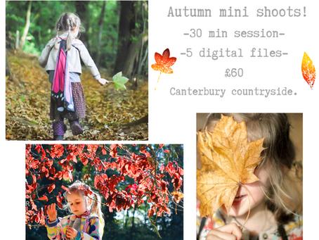 Autumn Mini Shoots - booking now !