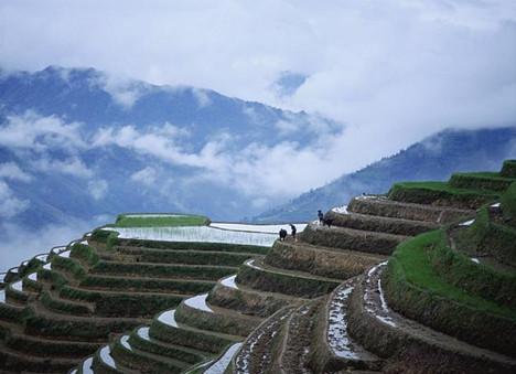 China 3.jpg