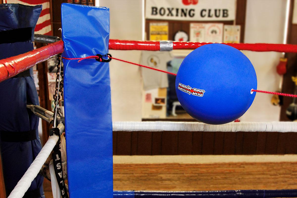 Boxing Ring set up
