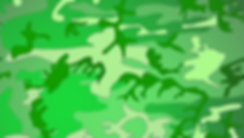 camouflage-green_edited.png