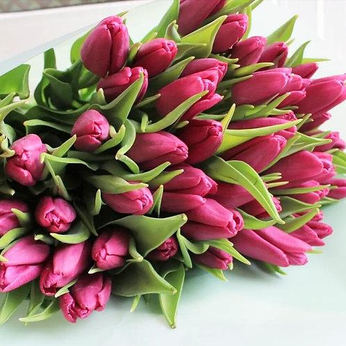 тюльпаны по предварительному заказу
