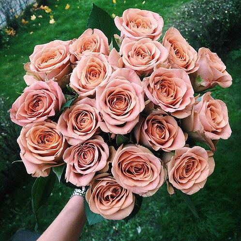 19 роз капучино