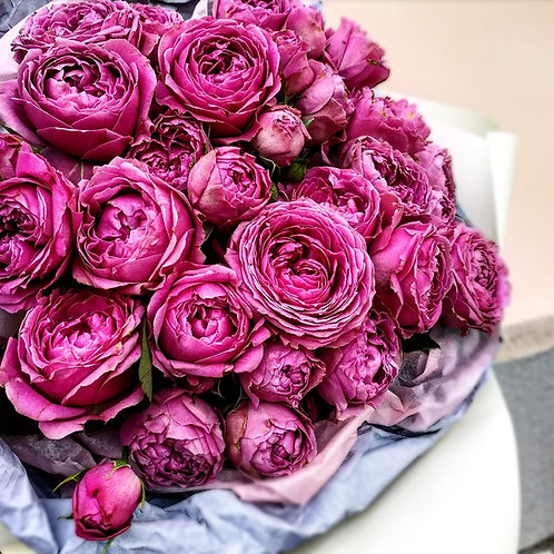 "Кустовая роза ""мисти баблс"""