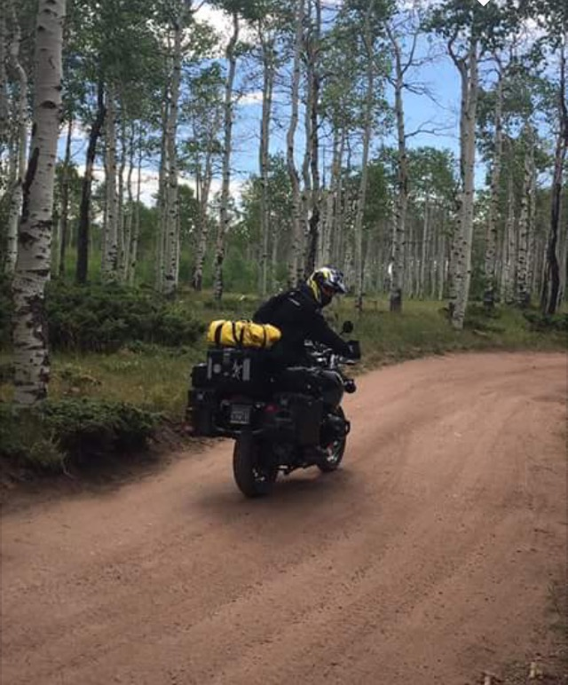 Steve on GS aspens Ashley NF Utah